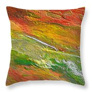 Spring In The Desert Throw Pillow