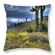 Spring In The Desert  Throw Pillow