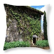 Spring In The Napa Valley Throw Pillow