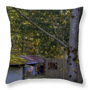 Spring In The Pacific Northwest Throw Pillow