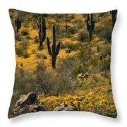 Spring In The Sonoran Desert  Throw Pillow