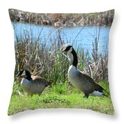Spring In The Wetlands Throw Pillow