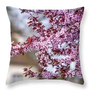 Spring In Town Throw Pillow