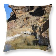 Spring In Vogel Canyon Throw Pillow