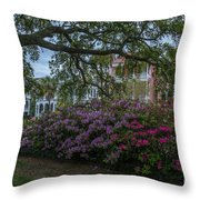 Spring In White Point Gardens Throw Pillow