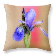Spring Iris 2 Throw Pillow