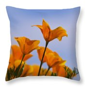 Spring Is A Poppin' Throw Pillow