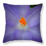 Spring Is All Around Throw Pillow