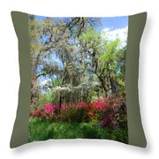 Spring Is All Over Throw Pillow