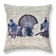 Spring Is Near Throw Pillow