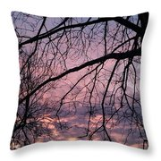 Spring Is On The Way Throw Pillow