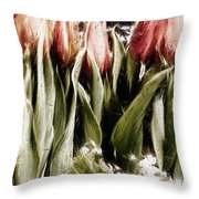 Spring Is Welcome Xx Throw Pillow