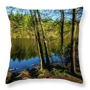 Spring It The Woods Throw Pillow