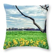 Spring Jog On The Potomac Throw Pillow