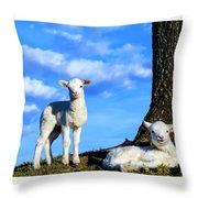 Spring Lambs Evening Light Throw Pillow