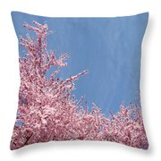 Spring Landscape Pink Trees Blossoms Blue Sky Baslee Troutman Throw Pillow