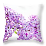 Spring Lilac Flowers Blooming Isolated On White Throw Pillow