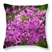 Spring Lilacs On Black Throw Pillow