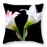Spring Lilies Throw Pillow