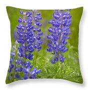 Spring Lupine Throw Pillow