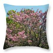 Spring Magnolia In Winter Park  Throw Pillow