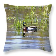 Spring Mallard 2010 Throw Pillow