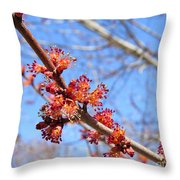 Spring Maple Blossoms Throw Pillow