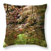 Spring Maple Leaves Over Japanese Garden Pond Throw Pillow