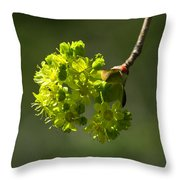 Spring Maple Throw Pillow
