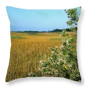 Spring Marsh Throw Pillow