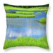 Spring Marsh Grasses Throw Pillow