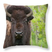 Spring Matriarch Throw Pillow