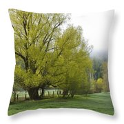 Spring Meadow Throw Pillow