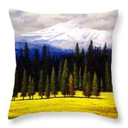 Spring Meadow Mount Brokeoff Throw Pillow