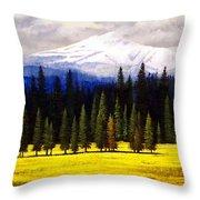 Spring Meadow Mount Brokeoff Throw Pillow