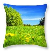 Spring Meadow With Green Grass Throw Pillow