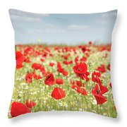 Spring Meadow With Wild Flowers Throw Pillow