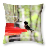 Spring Migration Hummingbird Throw Pillow