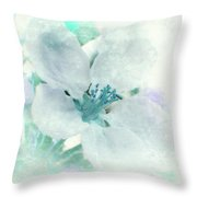 Spring Mood Throw Pillow