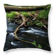 Spring Morning At Crum Elbow Creek I Throw Pillow