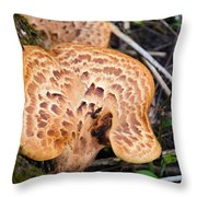 Spring Mushrooms Throw Pillow