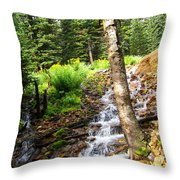 Spring Of Water Throw Pillow