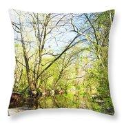 Spring On A Pennsylvania Stream, Fairmount Park, Philadelphia Throw Pillow