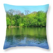 Spring On Barbadoes Island Throw Pillow