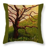 Spring On Figueroa Mt. Throw Pillow