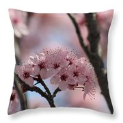 Spring On The Air Throw Pillow