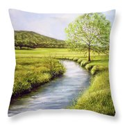 Spring On The Canal Throw Pillow