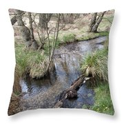 Spring On The Sherbrook Throw Pillow