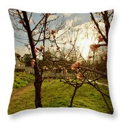 Spring Orchard In Williamsburg Throw Pillow