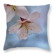 Spring Pastels Throw Pillow